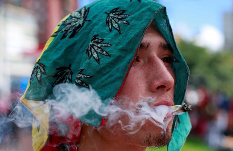 Депутаты предложили марихуану замена марихуане